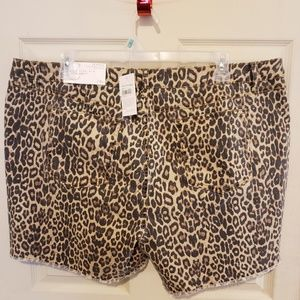 Cato Jean shorts leopard size 24w